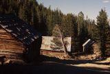cabins-2.jpg