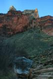 Horn Creek Valley