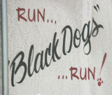 Run Black Dogs Run