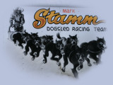 Mark Stamm Logo