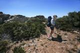 Manzanita Lined Path