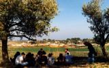 Kibbutz & Semester at Haifa University in 1991
