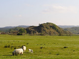 Dunadd - a fortified hill the seat of the leaders of the Dál Riada King in the C7th