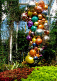 New York Botanical Garden - Chihuly Exhibition