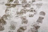 2007-01-31 Footsteps