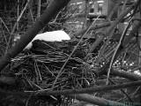 2007-03-19 Unoccupied