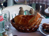 Sparrows have a lunch with us