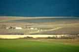 Vrsac, February 2007