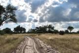 Sandy Track