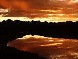 Denali Highway Sunset