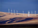 Columbia Basin Windmills