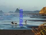 catalogue photo's 117_1024x768.jpg
