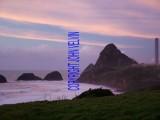 catalogue photo's 120_1024x768.jpg