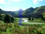 catalogue photo's 133_1024x768.jpg