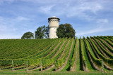 Water-tower in the vineyards