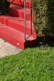 Grass, Dandylion, Bush, Steps
