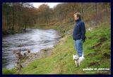 beside the river wharfe
