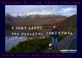 25122006 MERRY CHRISTMAS POOCHFRIENDS!