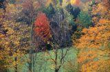 fall05-2.jpg