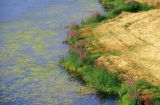 river01-2.jpg