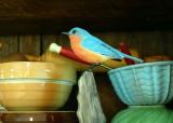 birdtest01-2.jpg