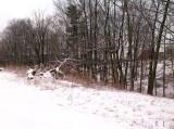 winter001-2.jpg