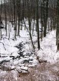 winter002-2.jpg