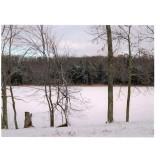 winter003-2.jpg