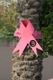 0809 22nd October 06 Cancer Charity Run Dubai.JPG
