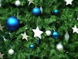 1913 10th December 06 Christmas Tree Mall of the Emirates Dubai.JPG