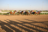 Dubai World Cup 2007.JPG