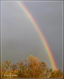 regenboog...