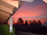 Birdfeeder Sunrise