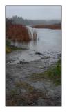 061201 Averse sur Mendon Ponds