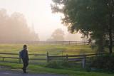 Morning Stroll.jpg