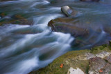 Rushing Water *.jpg