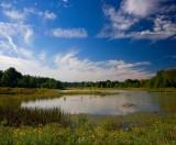Pond - Columbia Reservation *.jpg