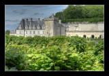 Jardins de Villandry 9