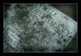 Même les tombes vieillissent - Paris