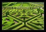 Jardins de Villandry 22