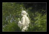 Versailles gardens 80