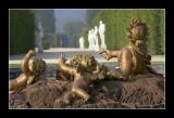 Versailles gardens 84