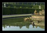 Latona bassin reflection