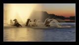 Sunset at the bassin du char d'Apollon 2