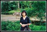 Ritsuko at the Zoo