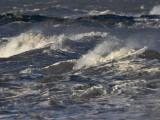Fife Ness incoming tide 22nd January 2007