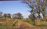 Balcomie - road leading to the Walled Garden