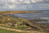 Crail from coastal  path