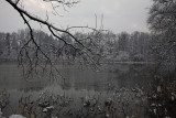 Winter_MG_5437-1.jpg