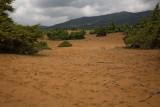 other_landscapes